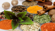 Специи и пищевые добавки от ООО