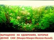 Удобрения- удо(микро,  макро,  калий,  железо) для аквариумных растений