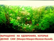 Удобрения - микро,  макро,  калий,  железо растениям. ПОЧТОЙ вышлю---