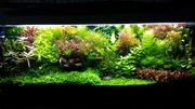 микро,  макро,  калий,  железо -- удобрения для аквариумных растений/
