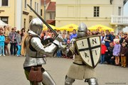 Рыцарское шоу на праздник,  свадьбу,  корпоратив
