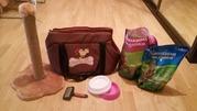 Когтеточка + сумка-переноска + 2 миски + наполнитель + корм + витамины