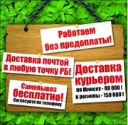 Саженцы,  цветы,  семена собственного производства и вед.производителей