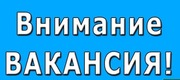 Швея-Портная вакансия ул. Богдановича-118 тел. 8025 982 44 19