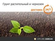 Грунт растительный и чернозем