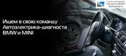 Автоэлектрик-диагност BMW и MINI