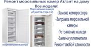 Качественный ремонт холодильников Атлант на дому. Звоните