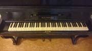 Фортепиано Беларусь 63-64 г. в.