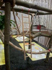Стенды/игровые площадки для попугаев разных видов