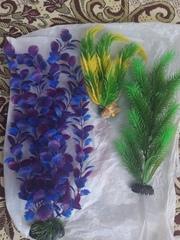 Растения для аквариумов 15-40см