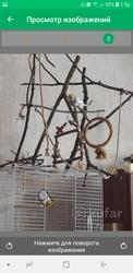 Изготовление жердочек, качелей, присад, стендов, фуражилок, гнездовые домик