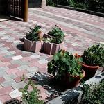 Укладка тротуарной плитки Минск и Околица