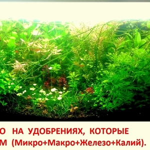 Удобрения - микро,  макро,  калий,  железо,  для растений. ПОЧТОЙ и МАРШРУ