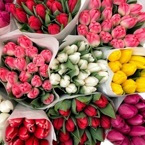 Свежие цветы оптом к празднику