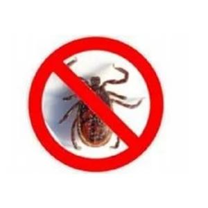Избавим от клещей и других паразитов