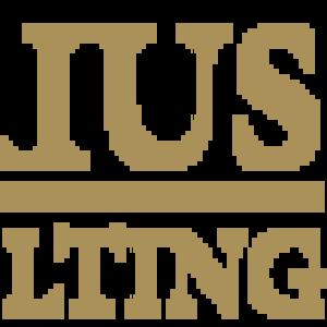 Юридические услуги «Бориус Консалтинг»