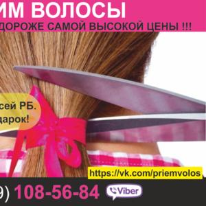 Продать волосы Минск. Работаем по всей РБ. Цена волос самая дорогая