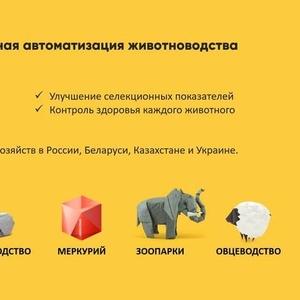 Автоматизированный учёт в животноводчестве
