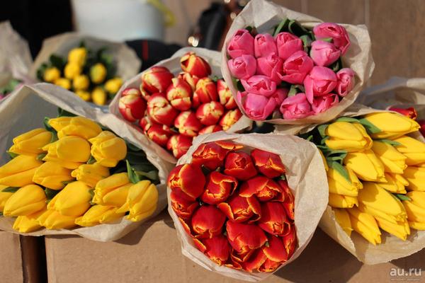 Тюльпаны выгодно оптом и в розницу в Минске 2