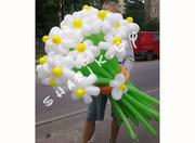 ВОЗДУШНЫЕ ШАРЫ,  оформление воздушными шарами,  www.sharik.by