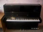 Пианино,  фортепьяно,  рояли,  Беларусь,  Минск