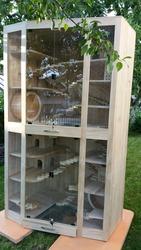 Клетки-витрины для шиншилл и дегу под заказ