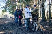 Воспитательная дрессировка щенка индивидуально и в группе. Консультации по воспитанию.