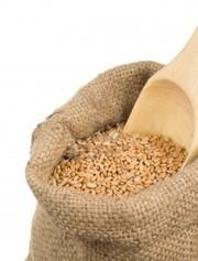 Пшеница продовольственная 3-й класс